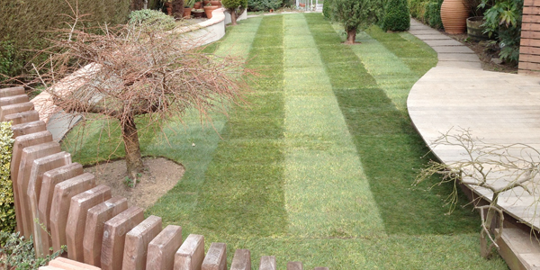 garden-landscaping-leicester